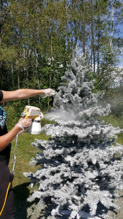 Spray Gun Tree