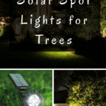 Accent your garden features at night with solar spot lights for trees