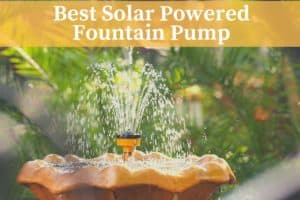 the best solar powered fountain pump in a backyard